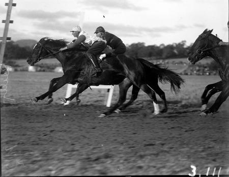 Horse races at Acton Racecourse