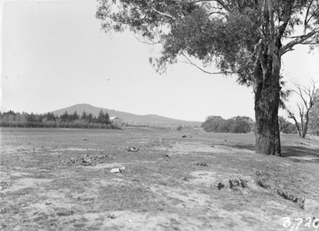 View of Canberra Golf Links.