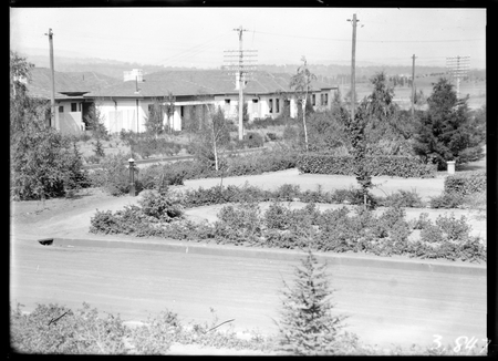 Garden, streets and houses at Kingston.