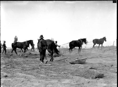 Workmen with horsedrawn scoops.