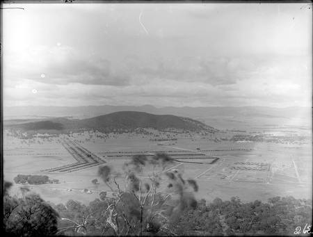 Panorama from Mount Ainslie overlooking North Canberra, Braddon and Black Mountain - Haig Park shelterbelt from Limestone Avenue