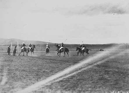 Polo match in progress, Campbell Park.