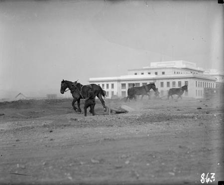 Parliament House landscape development with horse teams