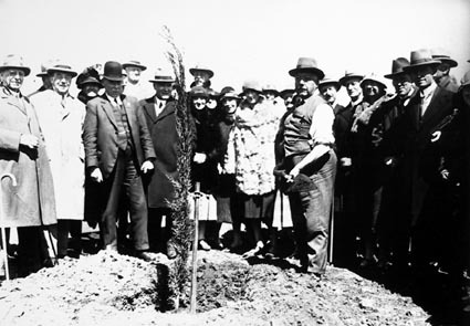 Empire Parliamentary Association tree planting ceremony