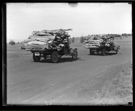 Two motor trucks carrying firewood.