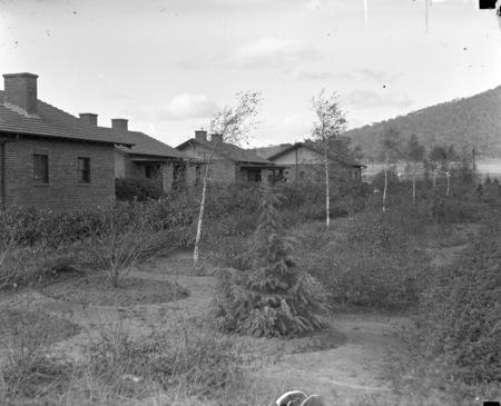 Braddon houses and gardens.