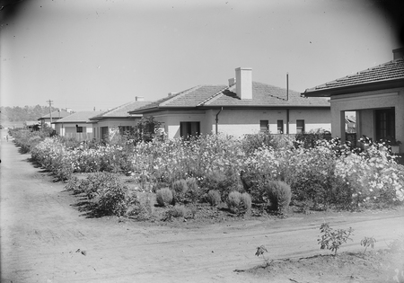 Cottages in Eastlake with well developed gardens.