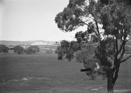 Parliament House from Acton.