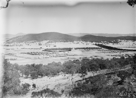Braddon and Civic Centre from Mt Ainslie. Ainslie Hotel, Limestone Avenue in foreground. Haig Park on right. Black Mountain in background.