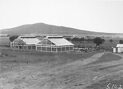 CSIR Insectarium under construction, Clunies Ross Street, Black Mountain.Mount Ainslie in background
