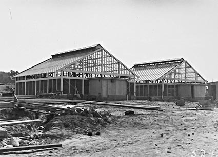 Insectariums at CSIR,  under construction,  Clunies Ross Street, Black Mountain