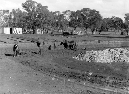 Australian Institute of Anatomy with horse teams and scoops excavating the foundations, McCoy Circle, Acton