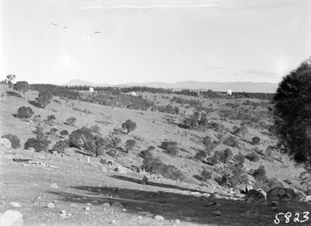Mt Stromlo hillside, with Observatory Telescopes and pine forrests in background.