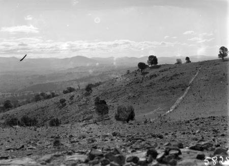 Mt Stromlo hillside, Dr. Duffield's grave site by the she-oak tree.