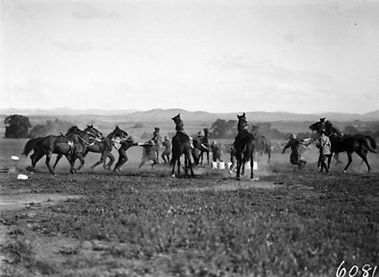 Royal Military College (RMC), Duntroon Sports Day, Cavalry musical chairs.