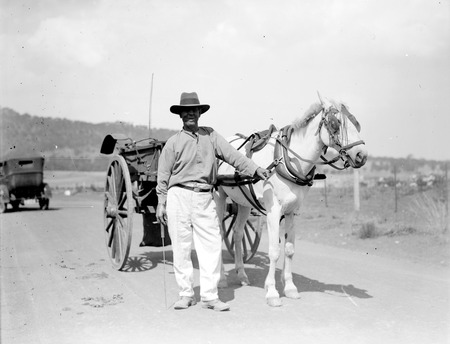 Horse and jinker with driver