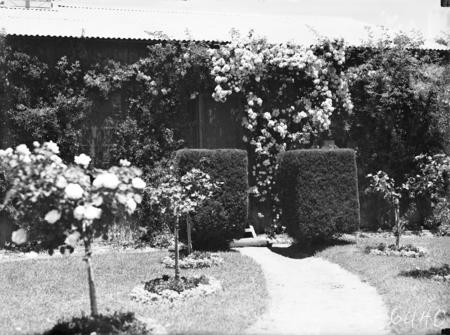 Spring Garden scene.