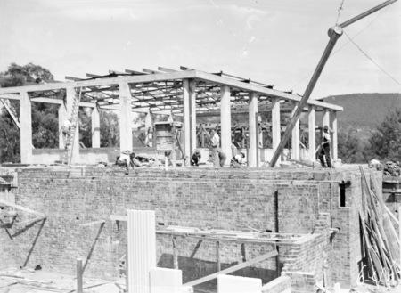Australian Institute of Anatomy under construction. McCoy Circle, Acton.