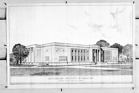 Federal Capital Commission Drawing of Australian Institute of Anatomy, McCoy Circle, Acton.