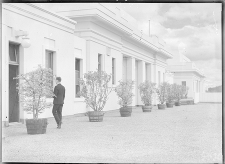 On the roof of Parliament House with rows of pot plants.