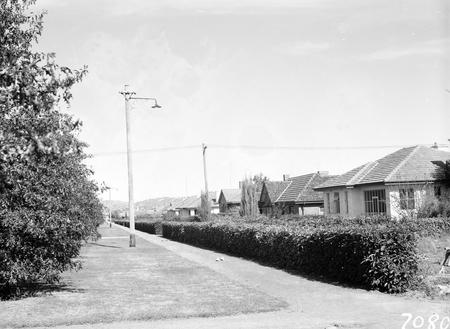 Houses in Torrens Street, Braddon.
