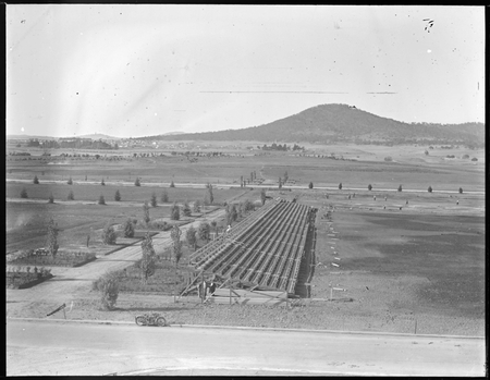 Spectators stands in Parkes Place from roof of Parliament House.Mount Ainslie in background.