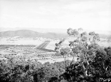 North end of Braddon from Mt Ainslie. Haig Park in the centre.