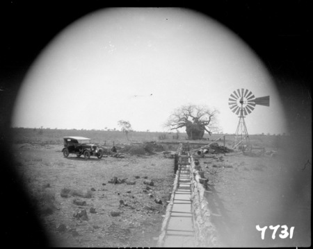 Flight to Central Australia. Windmill and water trough. Boab tree.