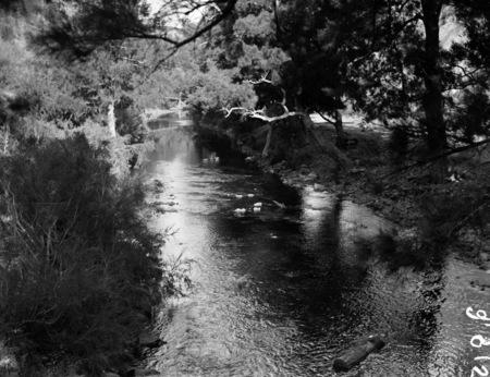 Cotter River.