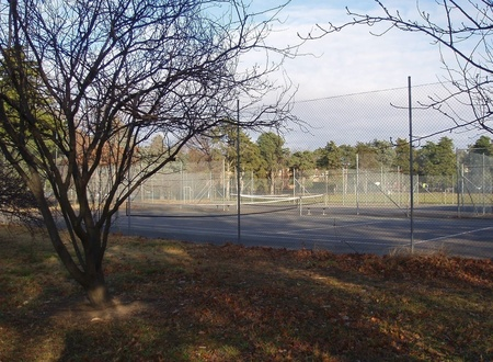 The courts rephotographed here are next to Manuka Oval - not sure if these extended to Canberra Ave or if the original courts were located elsewhere