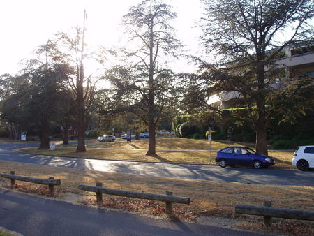 Taken from Telopea Park Avenue to the side of Manuka Oval